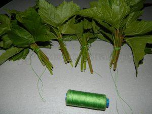 Готовим смородиновые листья к сушке