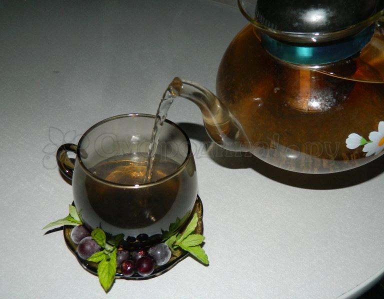 Чай из смородины в домашних условиях 51